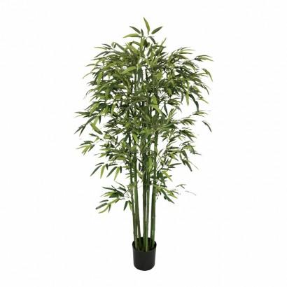 Pot avec bambou