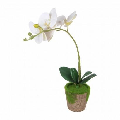 PArtificial plant orchid 4...
