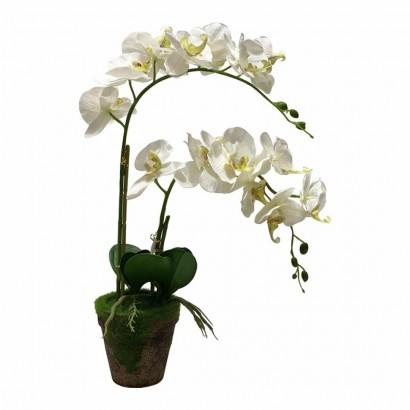 Artificial plant orchid...