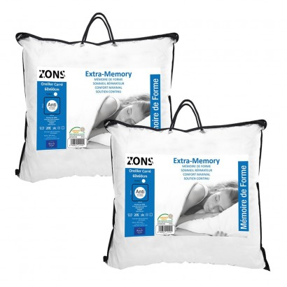 SET of 2 pillows Aloe vera...