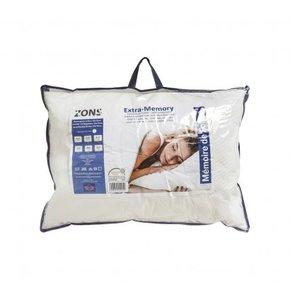 Pillow rectangular Aloe...