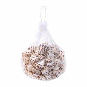 Decorative shell in mini...
