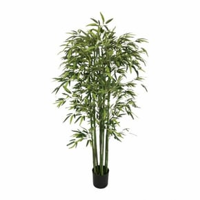Pot with bamboo