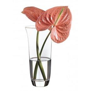 Vase rond en verre...