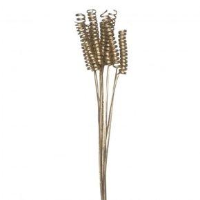 Bouquet tige de blé...